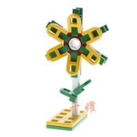 太阳花-Sun Flower